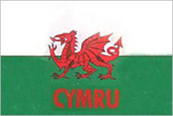 Ausschnitt eines walisischen Kfz-Kennzeichens (Quelle: kickschuh.wordpress.com)